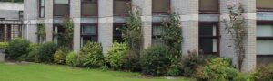 Student Accommodation Maynooth
